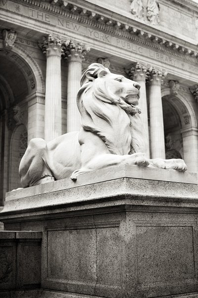 Wedding at The New York Public Library, NYC - Photography by Christian Oth Studio